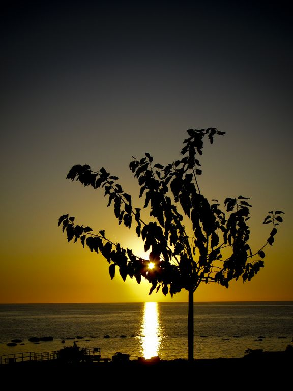 Sunset_at_The_Elysium_Hotel_Paphos_Cyprus