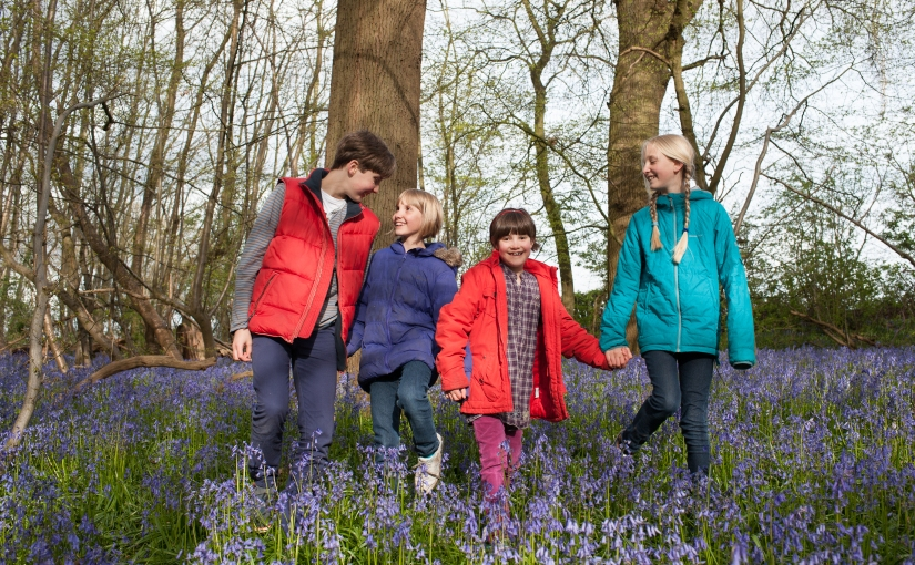 And the frog came too … family fun in the bluebells
